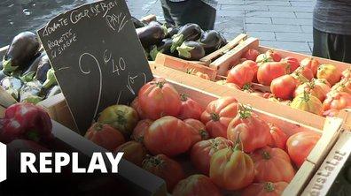 90' Enquêtes - Chips, tomates, glaces : révélations sur les produits stars de l'été