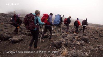À l'assaut du Kilimandjaro, le rêve et les larmes