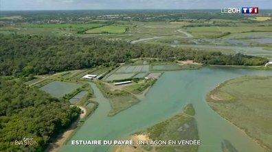 À la découverte de l'estuaire du Payré en Vendée