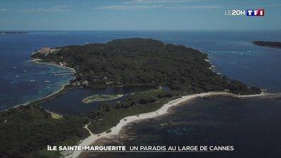 À la découverte de l'île Sainte-Marguerite
