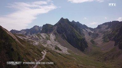 À la découverte de l'or des cimes dans les Pyrénées