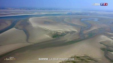 À la découverte de la baie de Somme, somptueuse au printemps