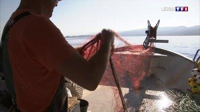 A la découverte de la Corse : les pêcheurs de la Castagna