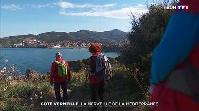 À la découverte de la Côte Vermeille, la merveille de la Méditerranée