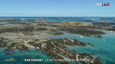 À la découverte de la petite merveille de Normandie, les îles Chausey