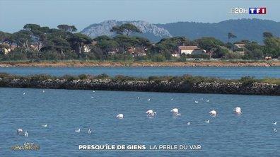 À la découverte de la presqu'île de Giens, la perle du Var