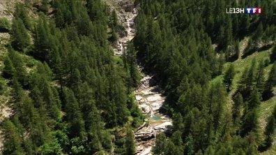 Les cascades de la Lance