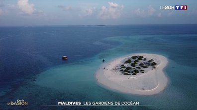 À la découverte des Maldives, le plus bel aquarium du monde