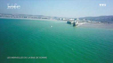 À la découverte des merveilles de la baie de Somme