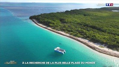 À la découverte des plages comptant parmi les plus belles de la planète