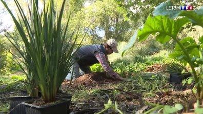 A la découverte du fabuleux jardin du Domaine du Rayol dans le Var