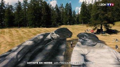 À la rencontre de Saype, un artiste en herbe aux fresques éphémères