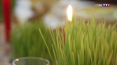 A la Sainte-Barbe, le blé porte bonheur en Provence