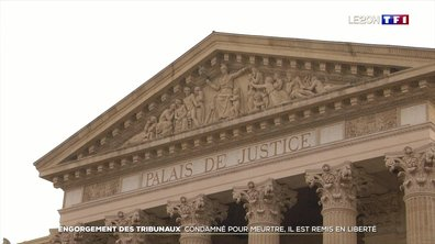 À Nîmes, un homme condamné pour féminicide libéré à cause du délai de détention provisoire trop long