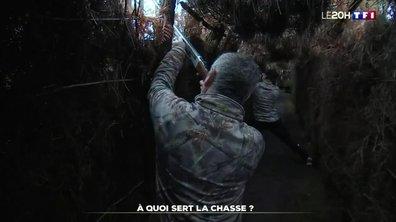 Environnement : quelle est l'utilité de la chasse ?
