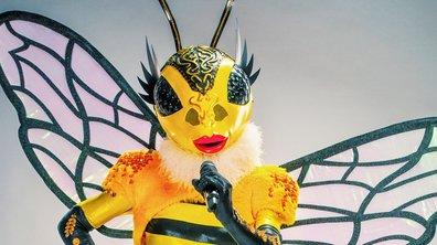 RÉVÉLATION - Qui est Abeille de Mask Singer ?