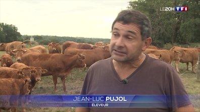 Agriculteurs : pourquoi se sentent-ils mal-aimés ?