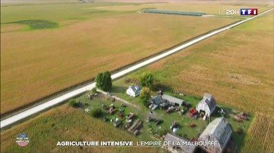 Agriculture intensive aux États-Unis : l'empire de la malbouffe