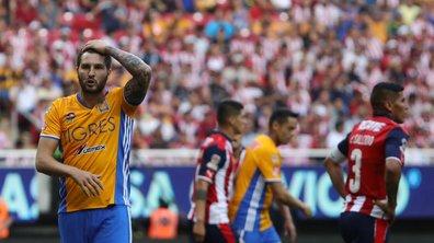 Mexique : Gignac et les Tigres éliminés en quarts de finale
