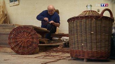 Artisans d'exception (2/4) : le travail de l'osier, une tradition millénaire
