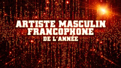 Artiste Masculin Francophone de l'année - Pré-nominations - NRJ Music Awards 2013