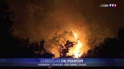 Aude : un incendie ravage 150 hectares de pinèdes