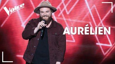 """Aurélien - """"Natural Blues"""" (Moby)"""
