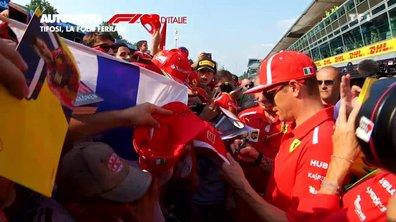 F1 - GP d'Italie : Tifosi, la folie Ferrari