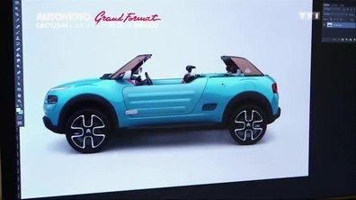 Grand Format : Citroën Cactus M Concept, sur les traces de la Méhari