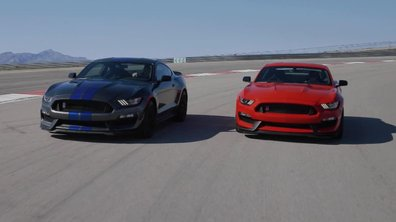Les Ford Mustang Shelby GT350/GT350R 2015 sur circuit