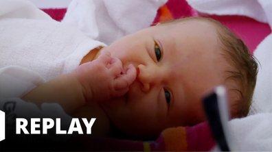 Baby boom du 30 août 2019 - L'instinct maternel