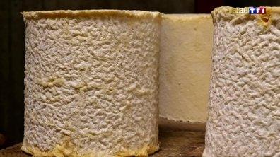 Balade gourmande en Savoie : dégustation du Persillé de Tignes