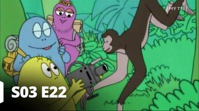 Barbapapa - S03 E22 - Le singe araignée