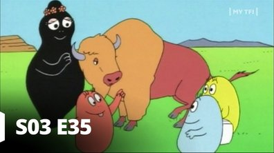 Barbapapa - S03 E35 - Les bisons