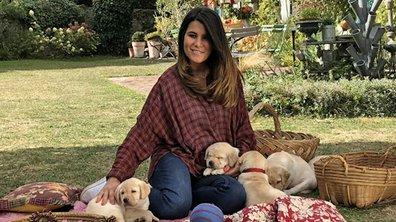 Bébés chiens : les 100 premiers jours de leur vie