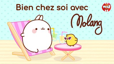 Molang - Compilation Bien chez soi - My Best Friend