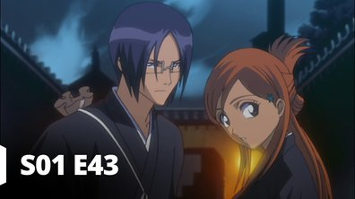 Bleach - S01 E43 - Episode 43
