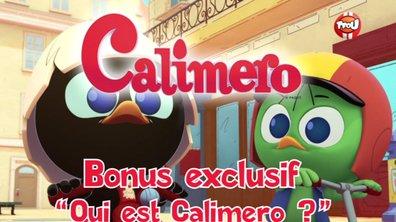 Bonus : Qui est Calimero ?