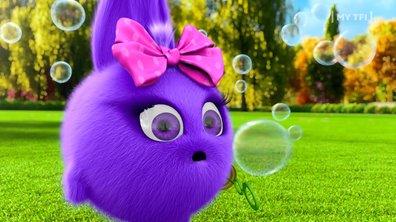 Sunny bunnies - S02 E18 - Les bulles
