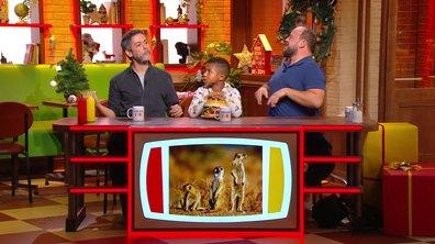 L'imitation du suricate de Manu Payet est magique