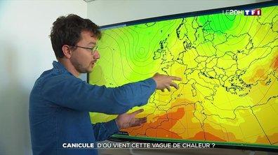 Canicule : comment expliquer la vague de chaleur ?