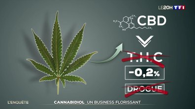 Cannabidiol : un business florissant