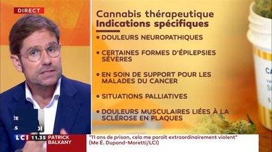 Cannabis thérapeutique : mode d'emploi