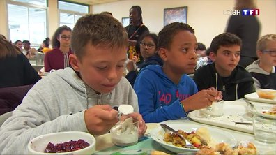 Cantine scolaire : le circuit court au goût du jour dans le Finistère