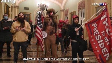 Capitole : qui sont ces manifestants pro-Trump ?