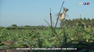 Certaines chasses traditionnelles d'oiseaux de nouveau autorisées