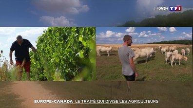 CETA : le traité qui divise les agriculteurs