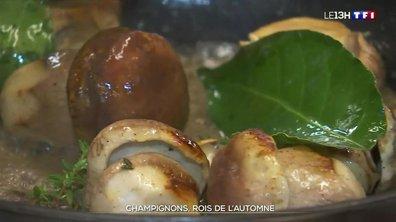 Champignons : les recettes d'un chef normand