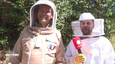 Chaouch Express : la reconversion d'Arnaud Montebourg, l'apiculteur