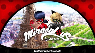 Webisode n°1 : Chat Noir vu par Marinette